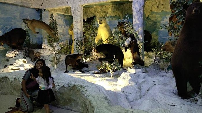 Belajar Sambil Beramal di Rahmat International Wildlife Museum and Gallery